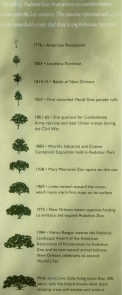 Oaks of Audubon Timeline